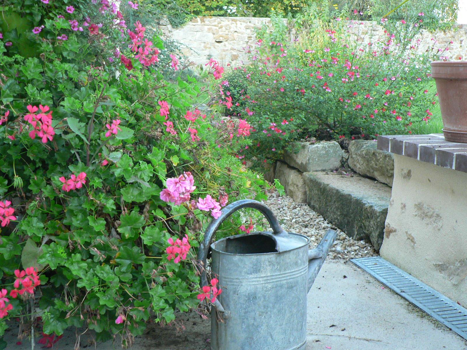 jardin fleuri et clos, animaux acceptés, transats, barbecue, salon ...